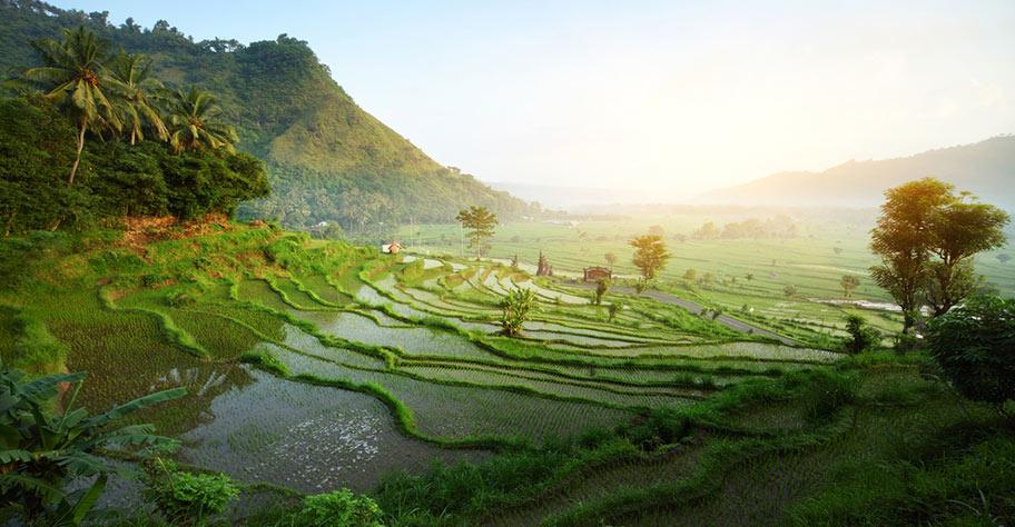 Bali Hochzeitsreise buchen nicht Kuoni