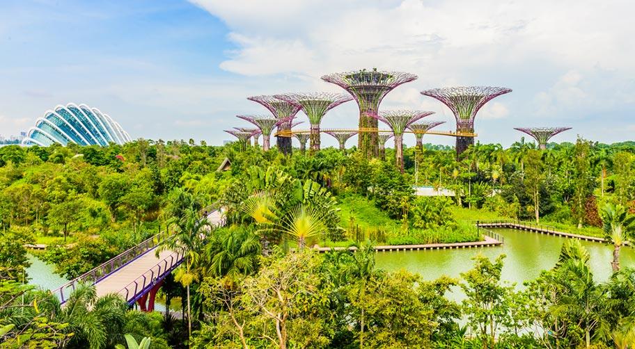 Gardens by the Bay Singapur Regenwald Attraktion
