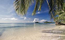 Insel Koh Mak Strand Palmen Wasser Tageslicht