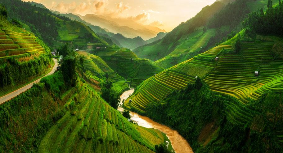 Reisfelder und Reisterrassen in der Bergregion von Sapa
