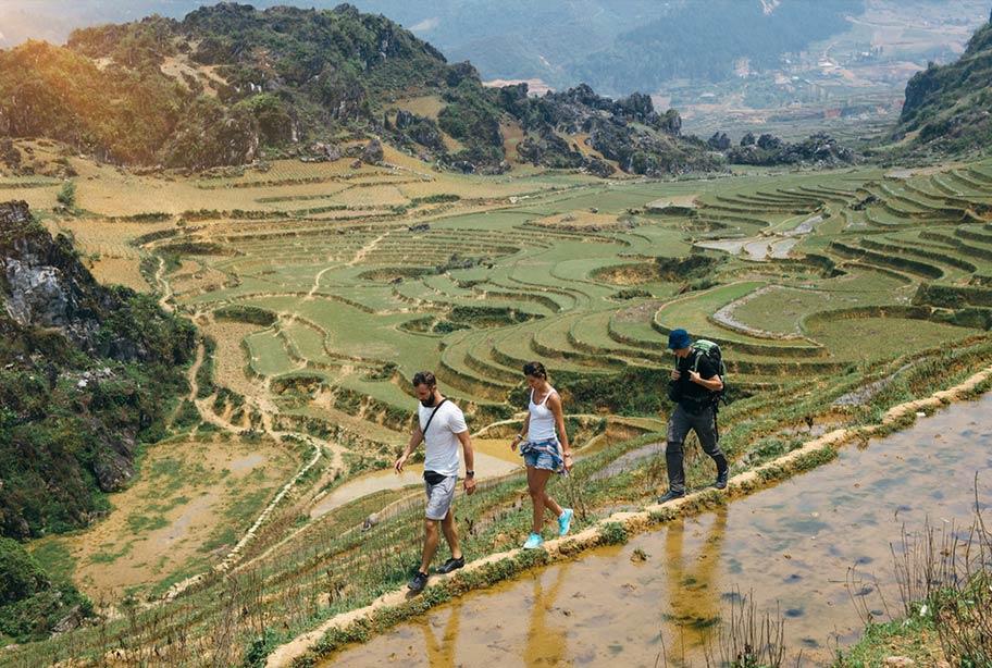 Toursten unternehmen Wanderung bei den Reisfeldern von Sapa
