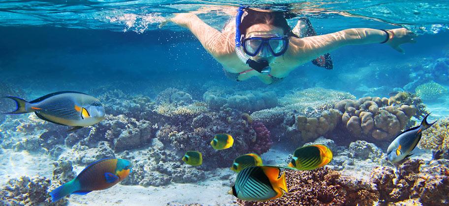 Schnorcheln Thailand Krabi Frau in Fischschwarm