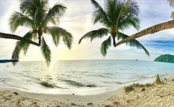 Thailand Urlaub Strand mit Palmen