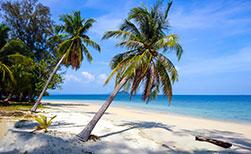 Traumstrand mit Palmen auf der Insel Koh Bulon Lae in Thailand